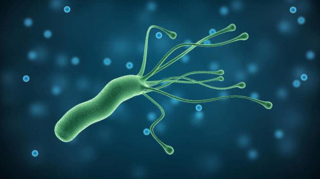 Prueba helicobacter pylori